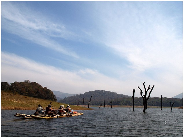 best-things-to-do-in-thekkady-5 Best Things to do in Thekkady
