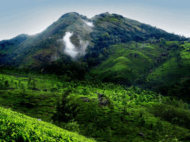 top-16-best-places-to-visit-in-munnar-in-2019-with-photos Top 16 Best Places to Visit in Munnar in 2019 (With Photos)