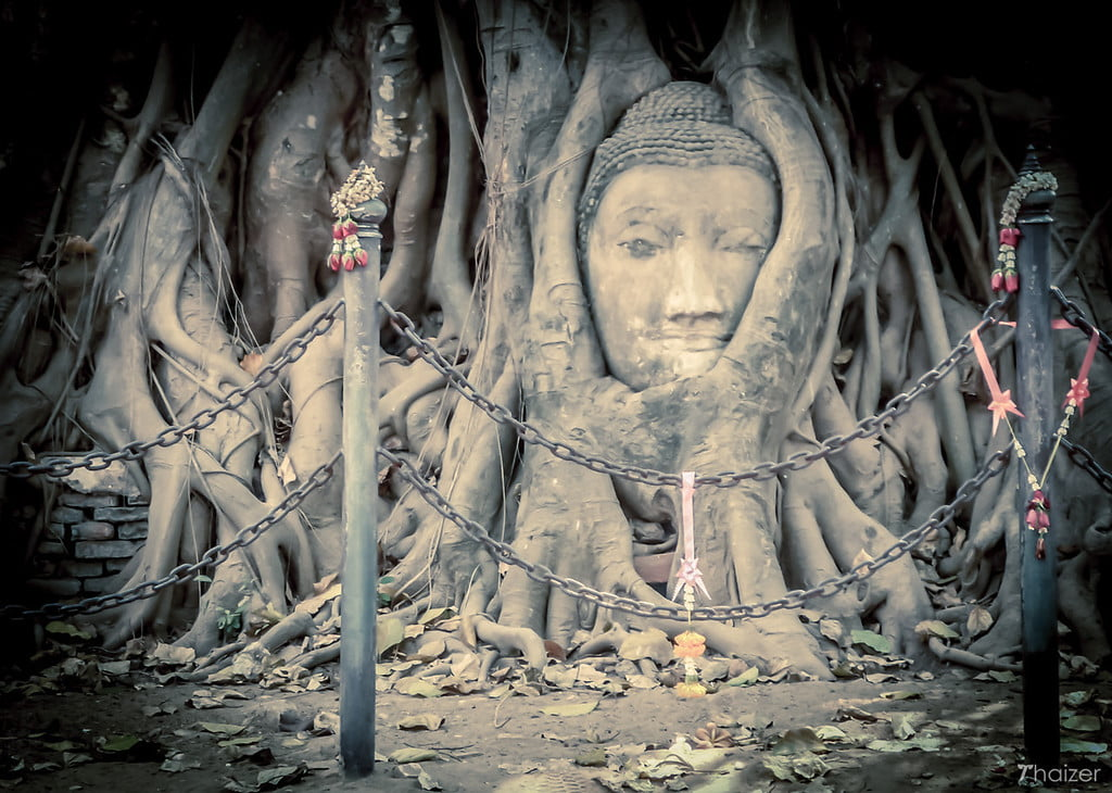 buddha-head-in-tree-roots-wat-mahathat-ayutthaya Buddha Head in Tree Roots, Wat Mahathat, Ayutthaya