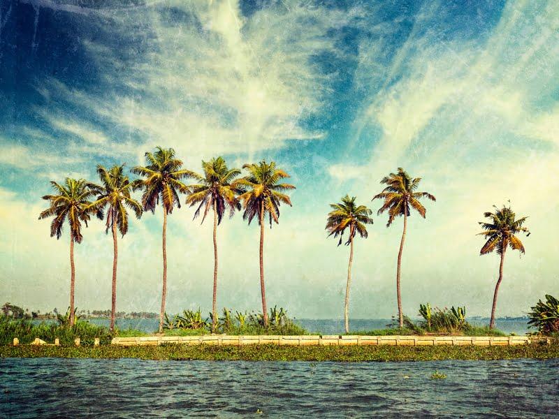 kerala-travel-guide