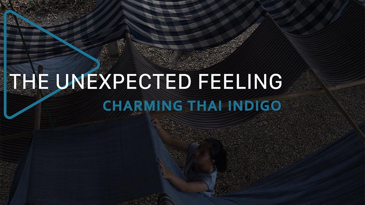 the-unexpected-feeling-episode-7-charming-thai-indigo The Unexpected Feeling Episode 7: Charming Thai Indigo