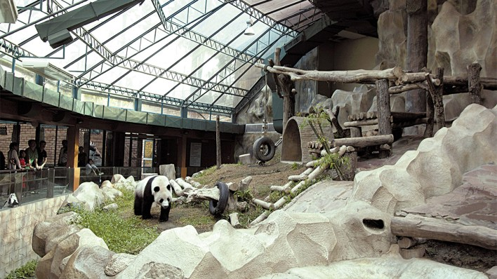 thailands-zoos-adapt-to-a-new-normal-as-they-reopen-today-2 Thailand's zoos adapt to a new normal as they reopen today