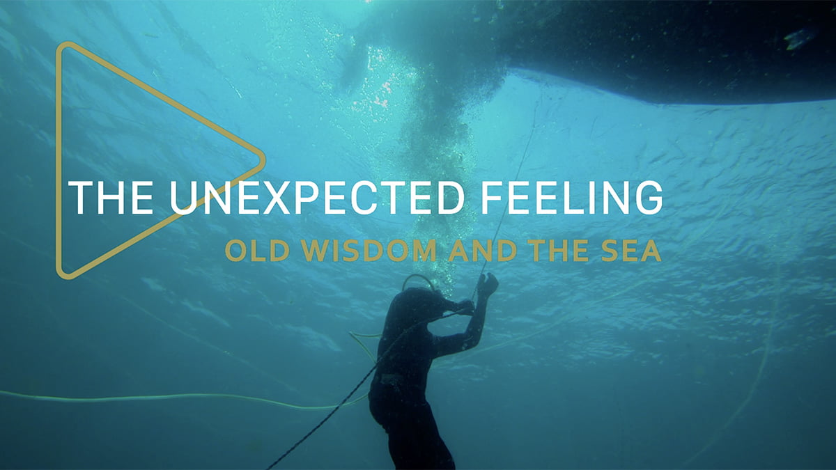the-unexpected-feeling-episode-8-old-wisdom-and-the-sea The Unexpected Feeling Episode 8: Old Wisdom and the Sea