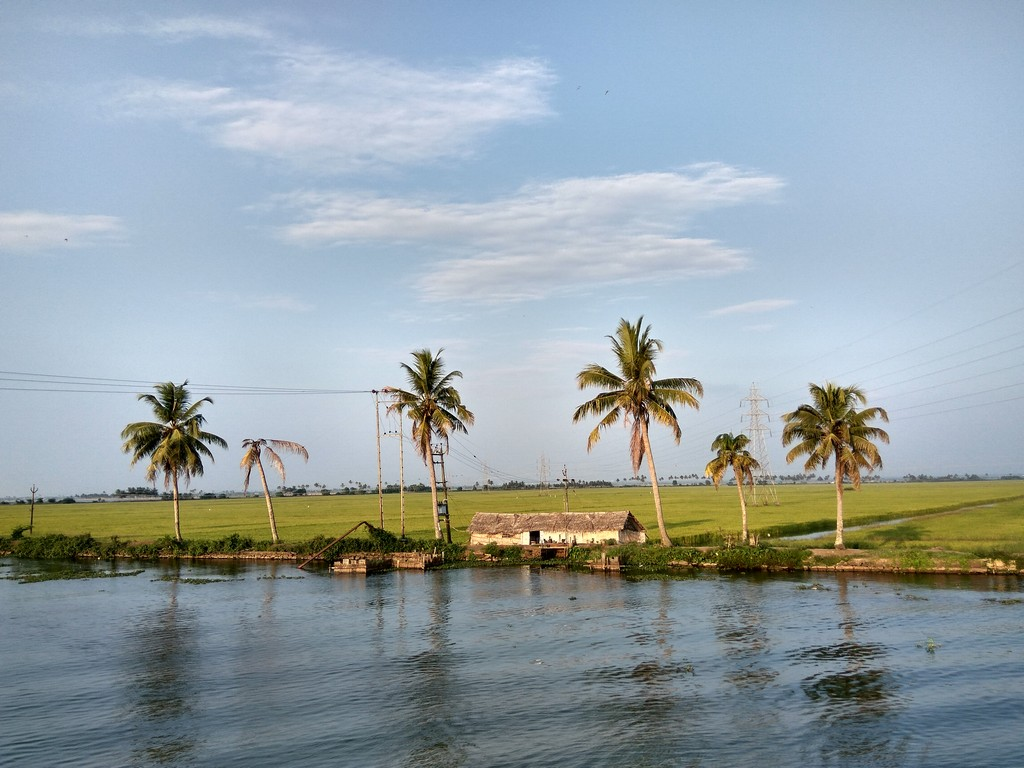 your-pocket-guide-to-the-best-backwaters-in-alleppey-2 Your Pocket Guide To The Best Backwaters In Alleppey