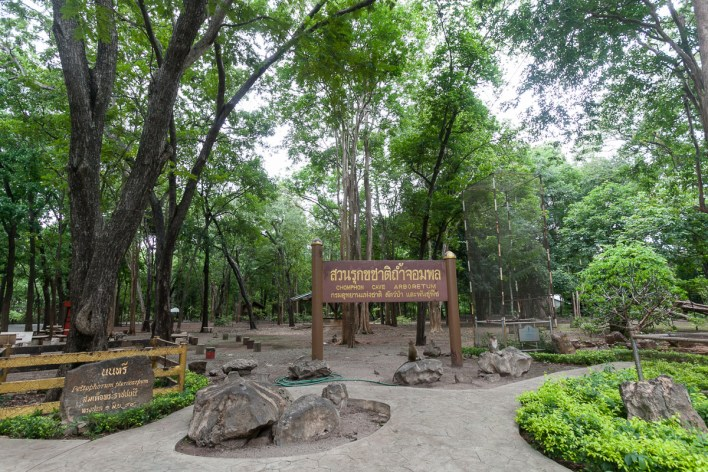 a-path-worth-travelling-discovering-ratchaburi-6 A Path worth travelling: Discovering Ratchaburi