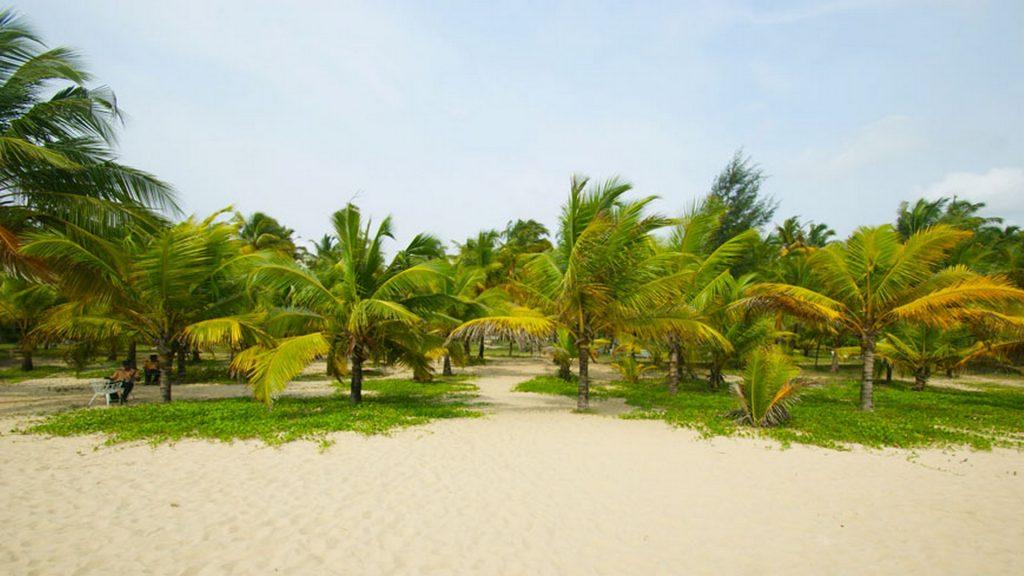 marai-or-cherai-which-is-the-best-beach-near-kochi Marai or Cherai-Which is the best beach near Kochi?